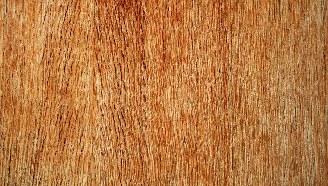 plywood supplier in India